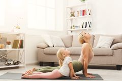 Η μητέρα και η κόρη που κάνουν τη γιόγκα ασκούν στο σπίτι στοκ εικόνες