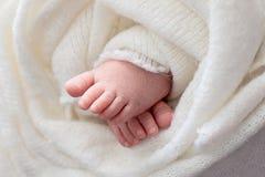 Η μητέρα κρατά τα πόδια του νεογέννητου μωρού με τα χέρια της, δάχτυλα στα αγκαλιάσματα ποδιών, μητρικής φροντίδας, αγάπης και οι στοκ εικόνες με δικαίωμα ελεύθερης χρήσης