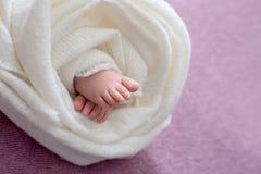 Η μητέρα κρατά τα πόδια του νεογέννητου μωρού με τα χέρια της, δάχτυλα στα αγκαλιάσματα ποδιών, μητρικής φροντίδας, αγάπης και οι στοκ εικόνα