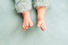 Η μητέρα κρατά τα πόδια του νεογέννητου μωρού με τα χέρια της, δάχτυλα στα αγκαλιάσματα ποδιών, μητρικής φροντίδας, αγάπης και οι στοκ φωτογραφία