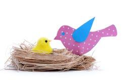 Η μητέρα πουλιών φροντίζει το μωρό στη φωλιά Στοκ Φωτογραφίες