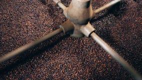Η μηχανή εργοστασίων ανακατώνει τα φασόλια καφέ απόθεμα βίντεο
