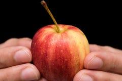 Η μικρή λαβή της Apple διαθέσιμη, κλείνει επάνω Στοκ φωτογραφία με δικαίωμα ελεύθερης χρήσης