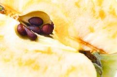 Η μισή από την κινηματογράφηση σε πρώτο πλάνο μήλων Πυρήνας μήλων με τους σπόρους Στοκ εικόνα με δικαίωμα ελεύθερης χρήσης