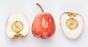 Η μισή περικοπή αυξήθηκε μήλο με το σπόρο στοκ φωτογραφία με δικαίωμα ελεύθερης χρήσης