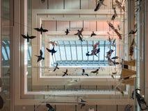 Η ΜΟΥΣΑ είναι το μουσείο των επιστημών Trento Το εσωτερικό ι Στοκ φωτογραφία με δικαίωμα ελεύθερης χρήσης
