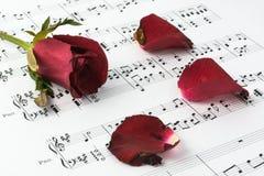 η μουσική κόκκινη αυξήθηκε φύλλο Στοκ φωτογραφία με δικαίωμα ελεύθερης χρήσης
