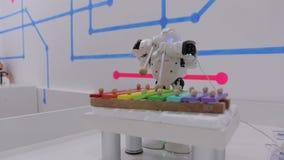 Η μουσική παιχνιδιών ρομπότ απόθεμα βίντεο