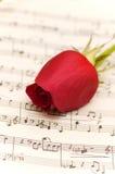 η μουσική σελίδα σημειώσεων κόκκινη αυξήθηκε ενιαίος Στοκ Εικόνα