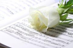 Η μουσική φύλλων άσπρη αυξήθηκε Β Στοκ φωτογραφία με δικαίωμα ελεύθερης χρήσης