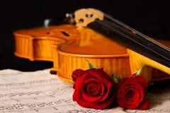 Η μουσική φύλλων βιολιών και αυξήθηκε Στοκ Εικόνες