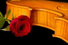 Η μουσική φύλλων βιολιών και αυξήθηκε Στοκ φωτογραφία με δικαίωμα ελεύθερης χρήσης
