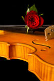 Η μουσική φύλλων βιολιών και αυξήθηκε Στοκ Εικόνα