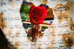Η μουσική φύλλων βιολιών και αυξήθηκε Στοκ Φωτογραφία