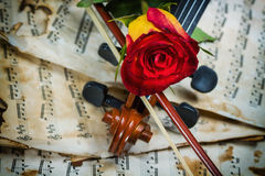 Η μουσική φύλλων βιολιών και αυξήθηκε Στοκ Φωτογραφίες