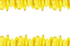 Η μπανάνα πελεκά τα γίνοντα πλαίσια εικόνων Στοκ φωτογραφία με δικαίωμα ελεύθερης χρήσης