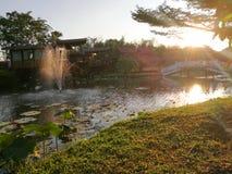 Η Μπανγκόκ Ταϊλάνδη, στις 10 Δεκεμβρίου 2018, λωτός ανθίζει στη λίμνη μαζί με τα ξύλινα σπίτια και τη γέφυρα στη στιγμή ηλιοβασιλ στοκ εικόνα