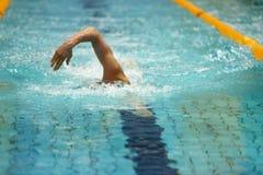 Η μπροστινή άποψη του ατόμου κολυμπά σε μια πισίνα Στοκ φωτογραφία με δικαίωμα ελεύθερης χρήσης