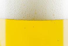 Η μπύρα βράζει κινηματογράφηση σε πρώτο πλάνο στο γυαλί Στοκ Εικόνα