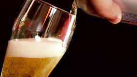 Η μπύρα μπορεί να χύσει στο γυαλί απόθεμα βίντεο