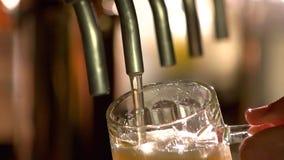 Η μπύρα σχεδίων χύνει σε ένα γυαλί, αργός-Mo απόθεμα βίντεο