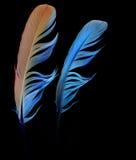 η μπλε συλλογή επενδύει με φτερά το πράσινο κόκκινο διάνυσμα Στοκ Εικόνες