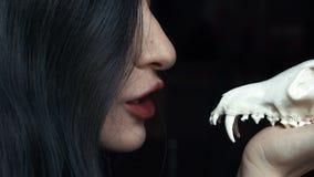 Η μυστήρια νέα μάγισσα ψιθυρίζει μια πληγή και μια περίοδο που κρατούν ένα κρανίο στα χέρια μιας αλεπούς απόθεμα βίντεο