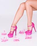 η μόδα ανθίζει το υψηλό ροζ στοκ εικόνα με δικαίωμα ελεύθερης χρήσης
