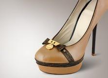 Η μόδα υψηλή βάζει τακούνια στο παπούτσι Στοκ Φωτογραφία