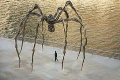 Η μόνη γυναίκα περπατά κάτω από την αράχνη δίπλα στην εκβολή του Μπιλμπάο που λούζεται σε ένα χρυσό φως Στοκ Εικόνες
