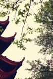Tian ji αττικό Στοκ Φωτογραφίες