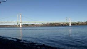 Η μύγα πουλιών θάλασσας πέρα από το Τακόμα στενεύει τη γέφυρα φιλμ μικρού μήκους