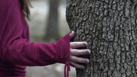 Η νέα γυναίκα αγγίζει ένα δέντρο σε σε αργή κίνηση φιλμ μικρού μήκους