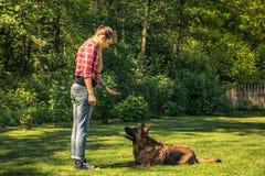 Η νέα γυναίκα λέει στο σκυλί για να καθορίσει στη χλόη, κατάρτιση υπακοής στοκ φωτογραφία με δικαίωμα ελεύθερης χρήσης