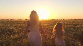 Η νέα γυναίκα με το κορίτσι πηγαίνει στον τομέα του σίτου στο ηλιοβασίλεμα απόθεμα βίντεο