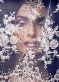 Η νέα γυναίκα ομορφιάς ρίχνει λευκό στενό επάνω δαντελλών, τη νύφη κάτω από το πέπλο, την πραγματική νύφη, makeup και τα καρφιά Στοκ Εικόνες