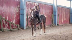 Η νέα γυναίκα οδηγά ένα άλογο στο σταύλο απόθεμα βίντεο