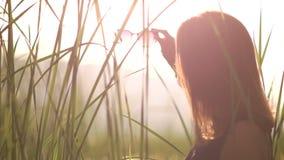 Η νέα γυναίκα σε ένα μαύρο φόρεμα βάζει στα γυαλιά ηλίου backlight φιλμ μικρού μήκους