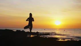 Η νέα γυναίκα στο δέντρο θέτει με παραδίδει namaste στην ωκεάνια παραλία στο ηλιοβασίλεμα απόθεμα βίντεο