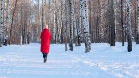 Η νέα γυναίκα στο κόκκινο χειμερινό σακάκι και τις αισθητές μπότες περπατά στο εικονογραφικό πάρκο πόλεων με τις σημύδες στην παγ απόθεμα βίντεο