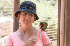 Η νέα γυναίκα ταΐζει τους παπαγάλους στον αυστραλιανό γκουρού Gan ζωολογικών κήπων σε Kibbutz Nir Δαβίδ, στο Ισραήλ Στοκ εικόνα με δικαίωμα ελεύθερης χρήσης