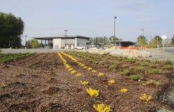 Η νέα διέλευση συνόρων Aldergrove στοκ εικόνα