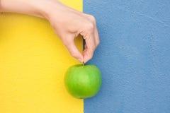 Η νέα καυκάσια γυναίκα κρατά υπό εξέταση από το μίσχο τον πράσινο οργανικό κίτρινο μπλε χρωματισμένο τοίχο της Apple Duotone Υγιή Στοκ φωτογραφία με δικαίωμα ελεύθερης χρήσης