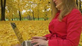 Η νέα καυκάσια γυναίκα στο κόκκινο παλτό δακτυλογραφεί στο lap-top στο πάρκο φθινοπώρου με τα κίτρινα δέντρα απόθεμα βίντεο