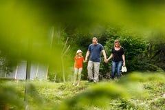 Η νέα οικογένεια του πατέρα, της μητέρας και της κόρης περπατά μαζί στο ηλιόλουστο δάσος θερινών βουνών κρατώντας κάθε άλλοι χέρι στοκ εικόνες
