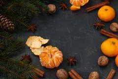 Η νέα σύνθεση έτους Χριστουγέννων με tangerines, το γλυκάνισο, τα καρύδια, τα ραβδιά κανέλας και το πράσινο δέντρο έλατου διακλαδ στοκ φωτογραφία με δικαίωμα ελεύθερης χρήσης