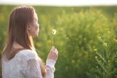 Η νέα φυσώντας πικραλίδα γυναικών μόδας άνοιξη καλλιεργεί την άνοιξη Άνοιξη Καθιερώνον τη μόδα κορίτσι στο υπόβαθρο τοπίων ηλιοβα Στοκ φωτογραφίες με δικαίωμα ελεύθερης χρήσης