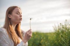 Η νέα φυσώντας πικραλίδα γυναικών μόδας άνοιξη καλλιεργεί την άνοιξη Άνοιξη Καθιερώνον τη μόδα κορίτσι στο υπόβαθρο τοπίων ηλιοβα Στοκ Εικόνες