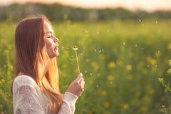 Η νέα φυσώντας πικραλίδα γυναικών μόδας άνοιξη καλλιεργεί την άνοιξη Άνοιξη Καθιερώνον τη μόδα κορίτσι στο υπόβαθρο τοπίων ηλιοβα Στοκ Εικόνα