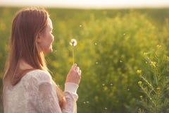 Η νέα φυσώντας πικραλίδα γυναικών μόδας άνοιξη καλλιεργεί την άνοιξη Άνοιξη Καθιερώνον τη μόδα κορίτσι στο υπόβαθρο τοπίων ηλιοβα Στοκ φωτογραφία με δικαίωμα ελεύθερης χρήσης